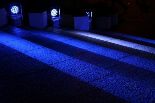 光のルネサンス2009