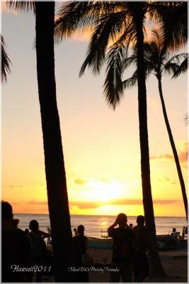 hawaii2011-15.jpg