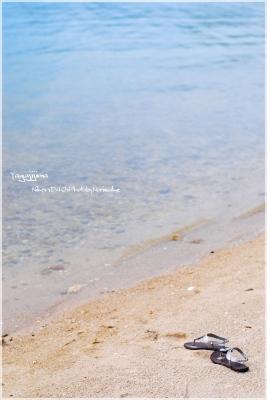 yagajijima1.jpg