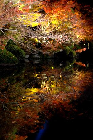 水面に移りこむ紅葉