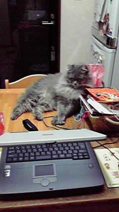 2009110301570000.jpg