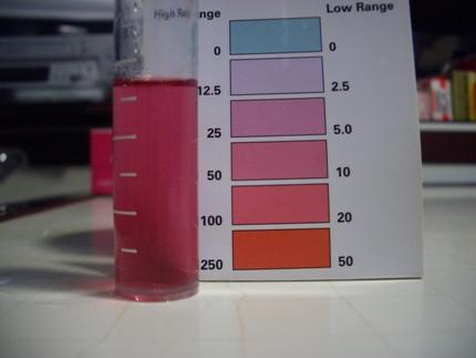 硝酸塩水換え後20091219
