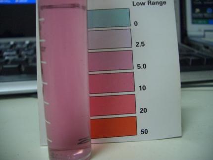 鉄釘プラk-スまる1日硝酸塩60ppm