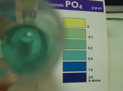 鉄釘リン酸塩20_4ppm