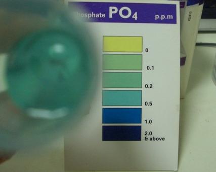 リン酸塩20091230