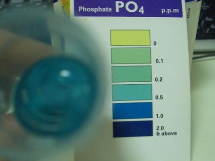 リン酸塩サブ20100106