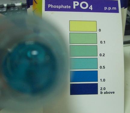 リン酸塩サブ20100107
