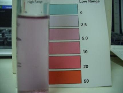 硝酸塩20100115