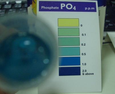 リン酸塩20100115