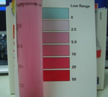 本水槽硝酸塩20100202