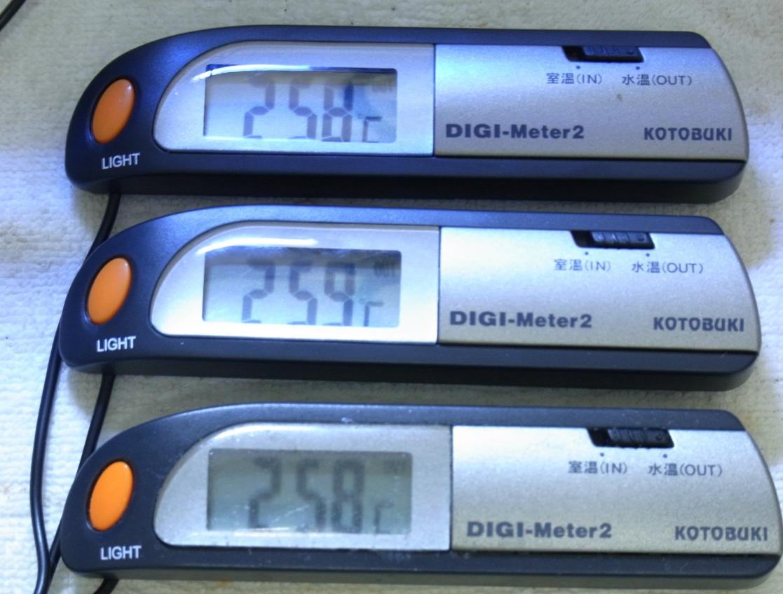 温度計20100822