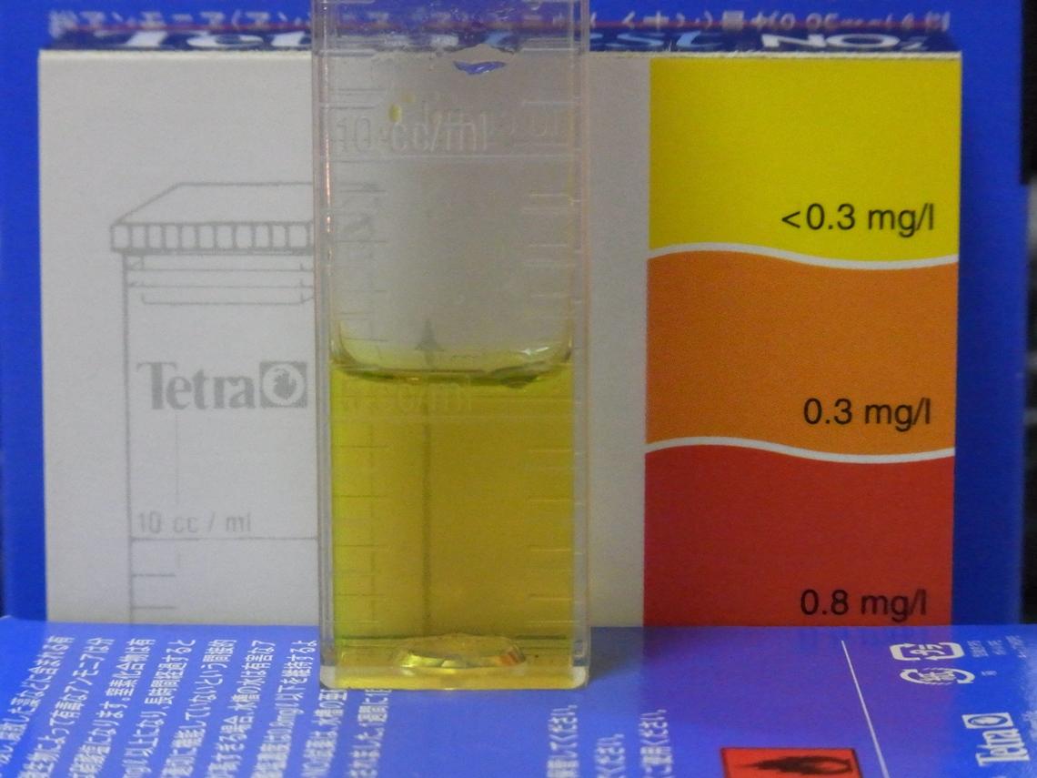 亜硝酸20110304
