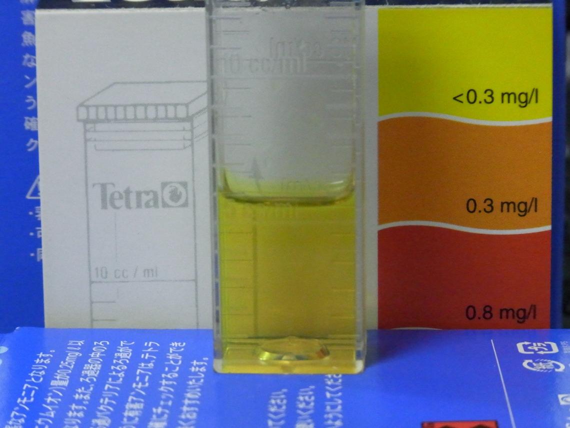 亜硝酸20110312