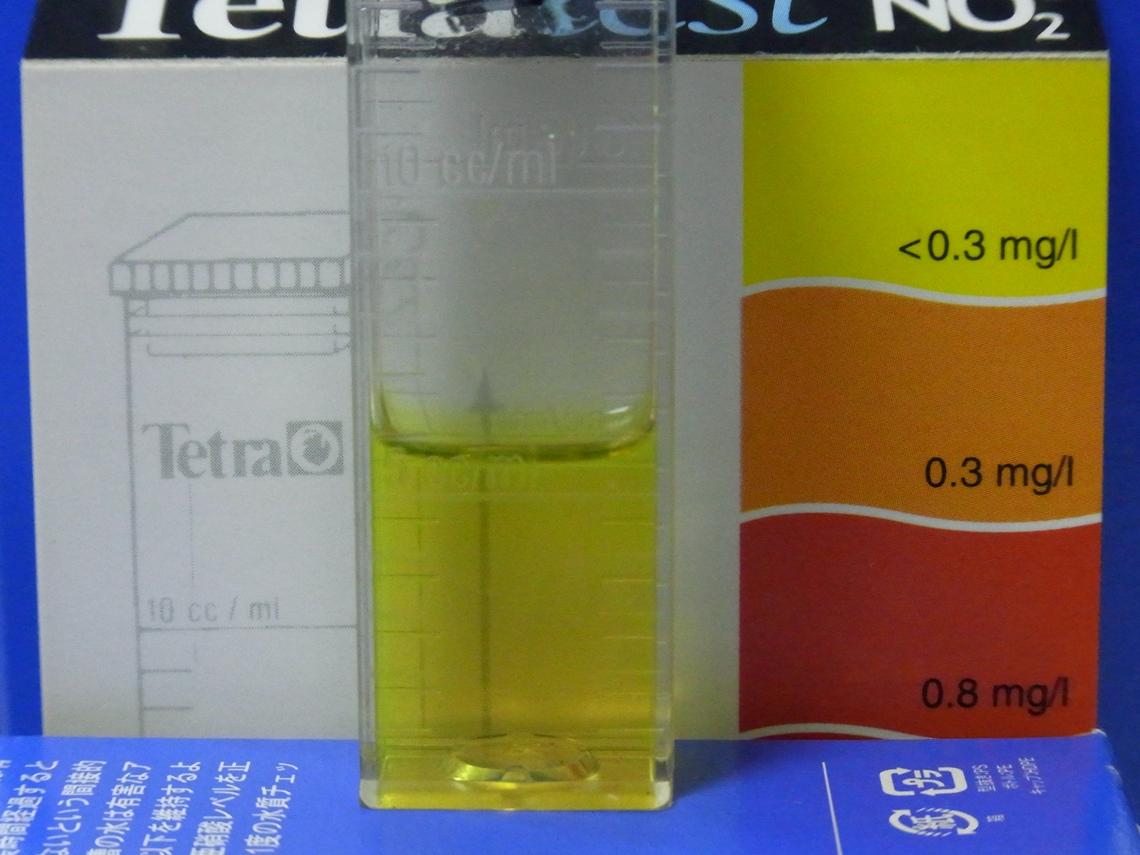 亜硝酸_24_20110321