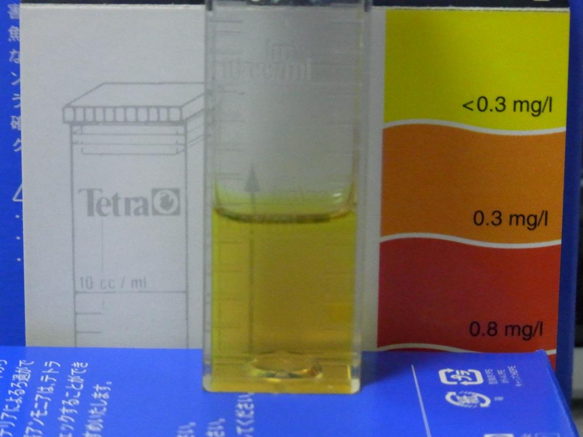 亜硝酸20110331