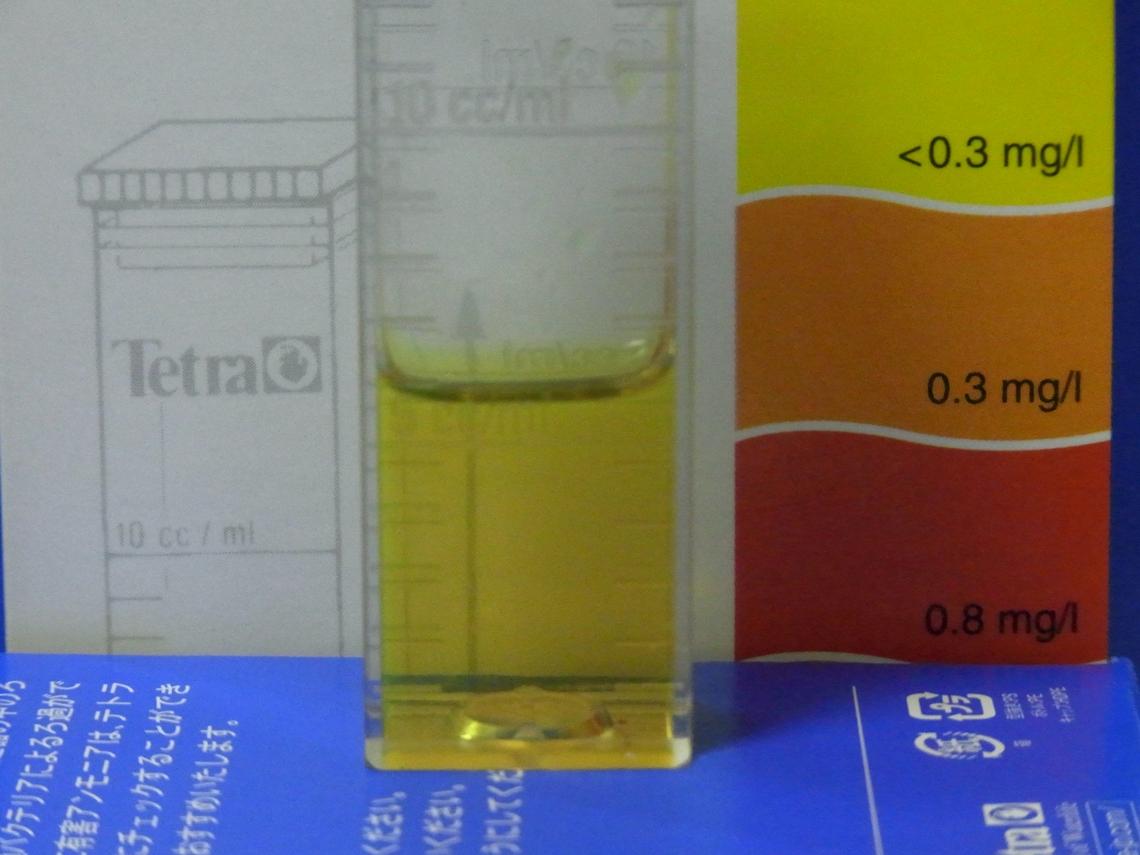 亜硝酸20110403