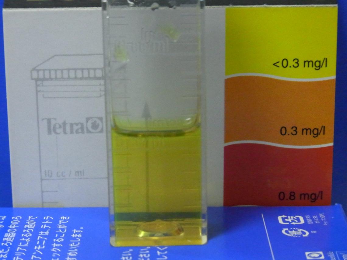 亜硝酸20110408