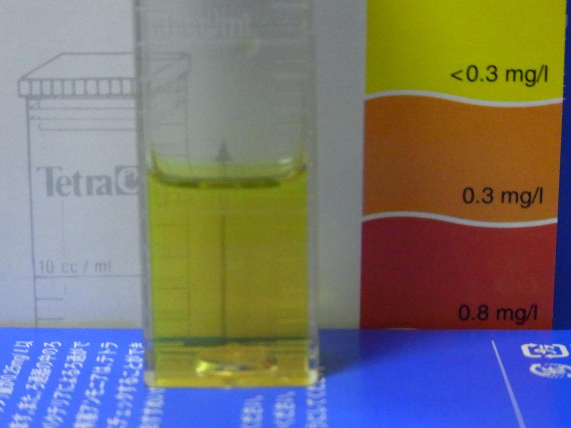 亜硝酸20110409