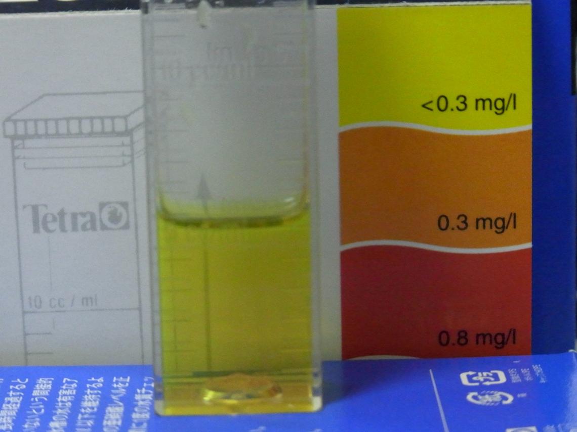 亜硝酸20110412
