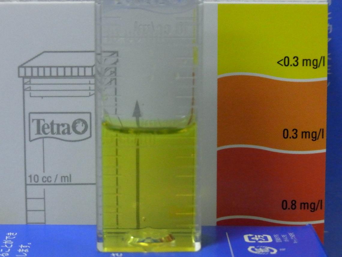 亜硝酸20110414