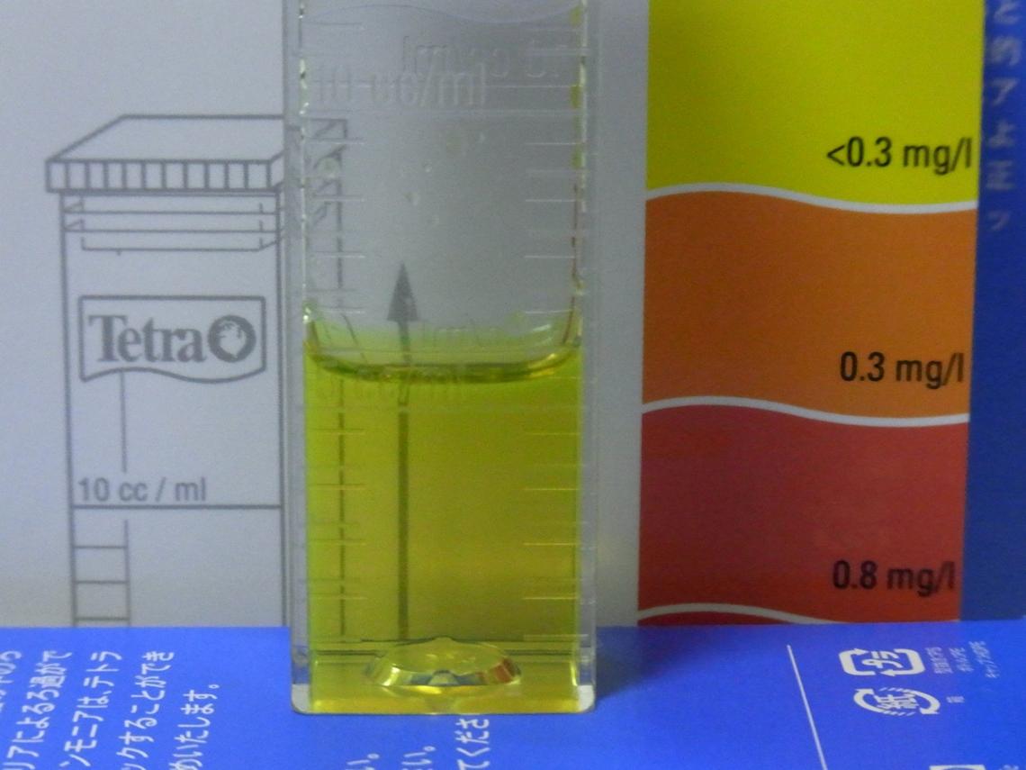 亜硝酸20110418