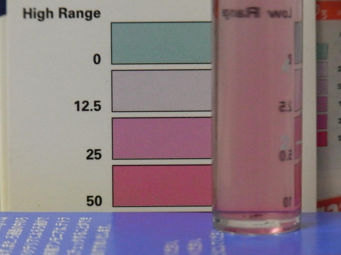 硝酸塩2_20110418