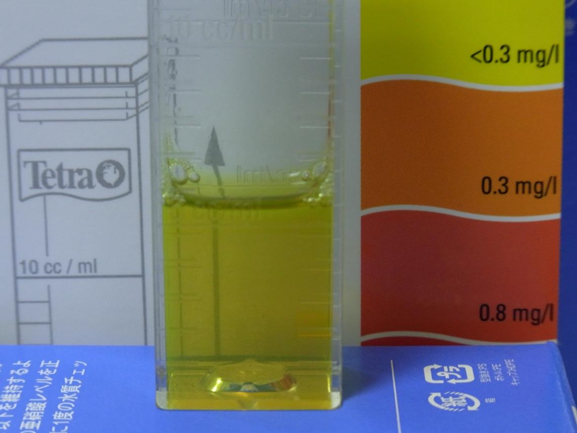汚水亜硝酸20110418