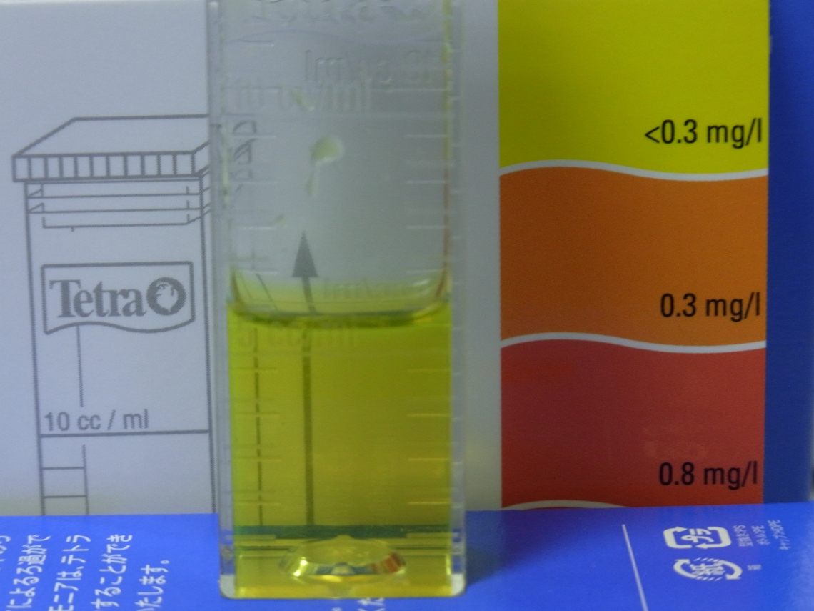 亜硝酸20110420