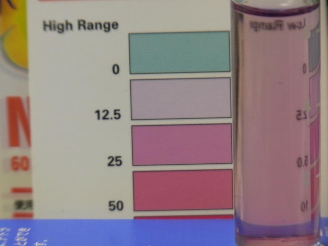 硝酸塩2_20110420