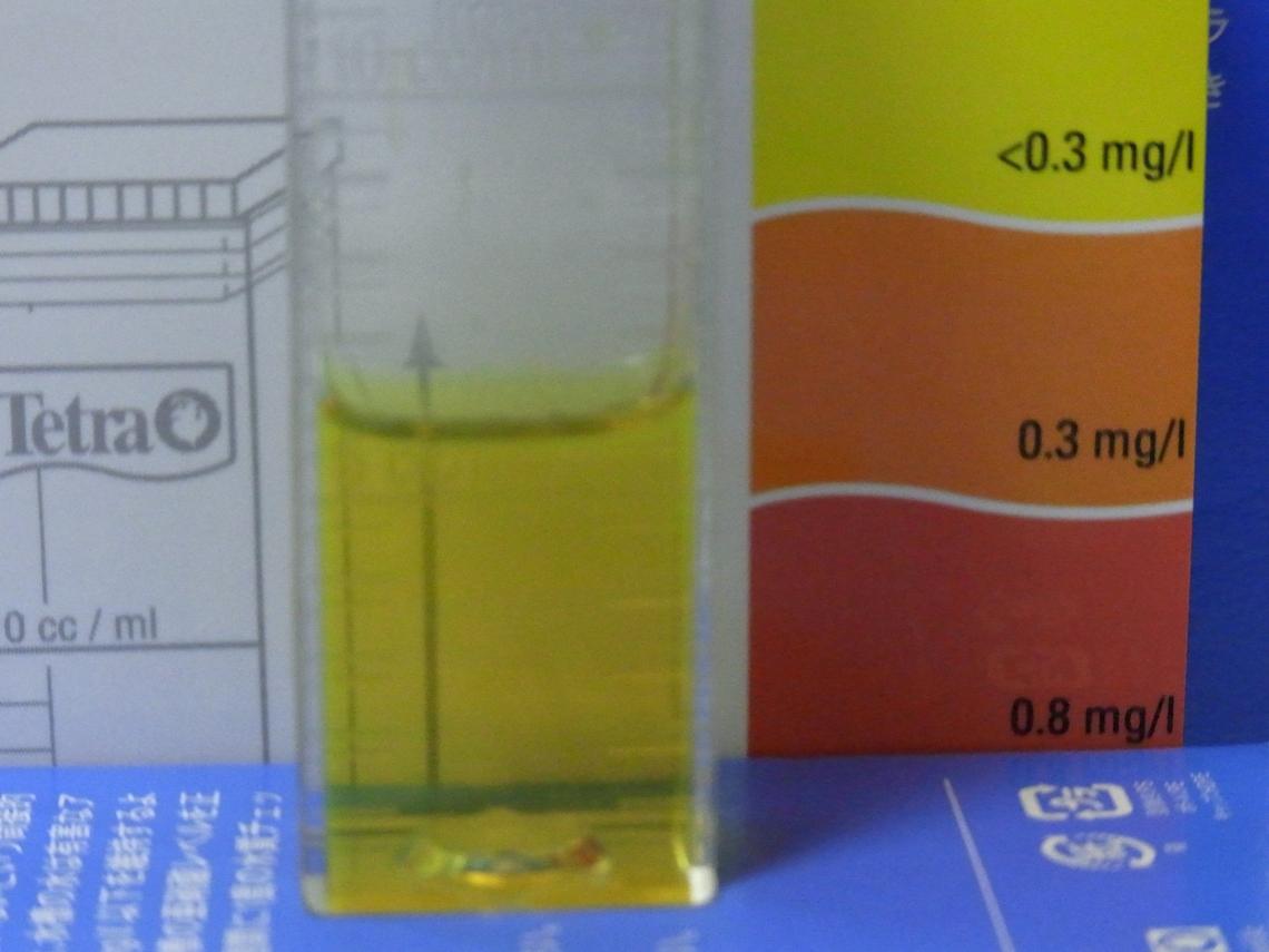 亜硝酸20110424