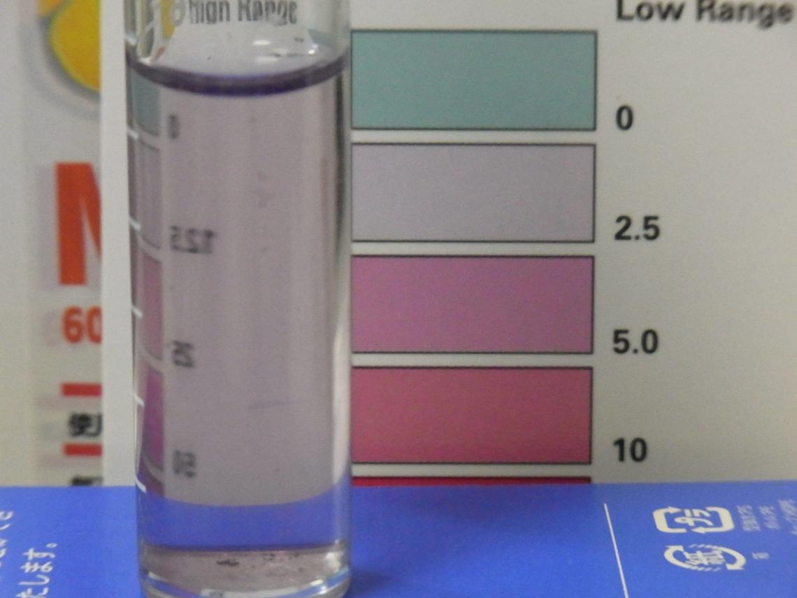 レッドシー硝酸塩1_20110424