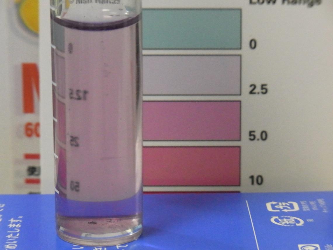 レッドシー硝酸塩2_20110424