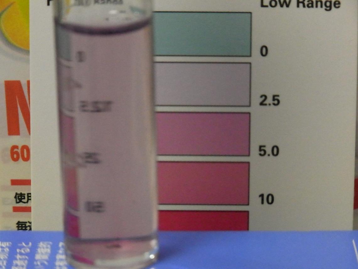 硝酸塩3_20110425