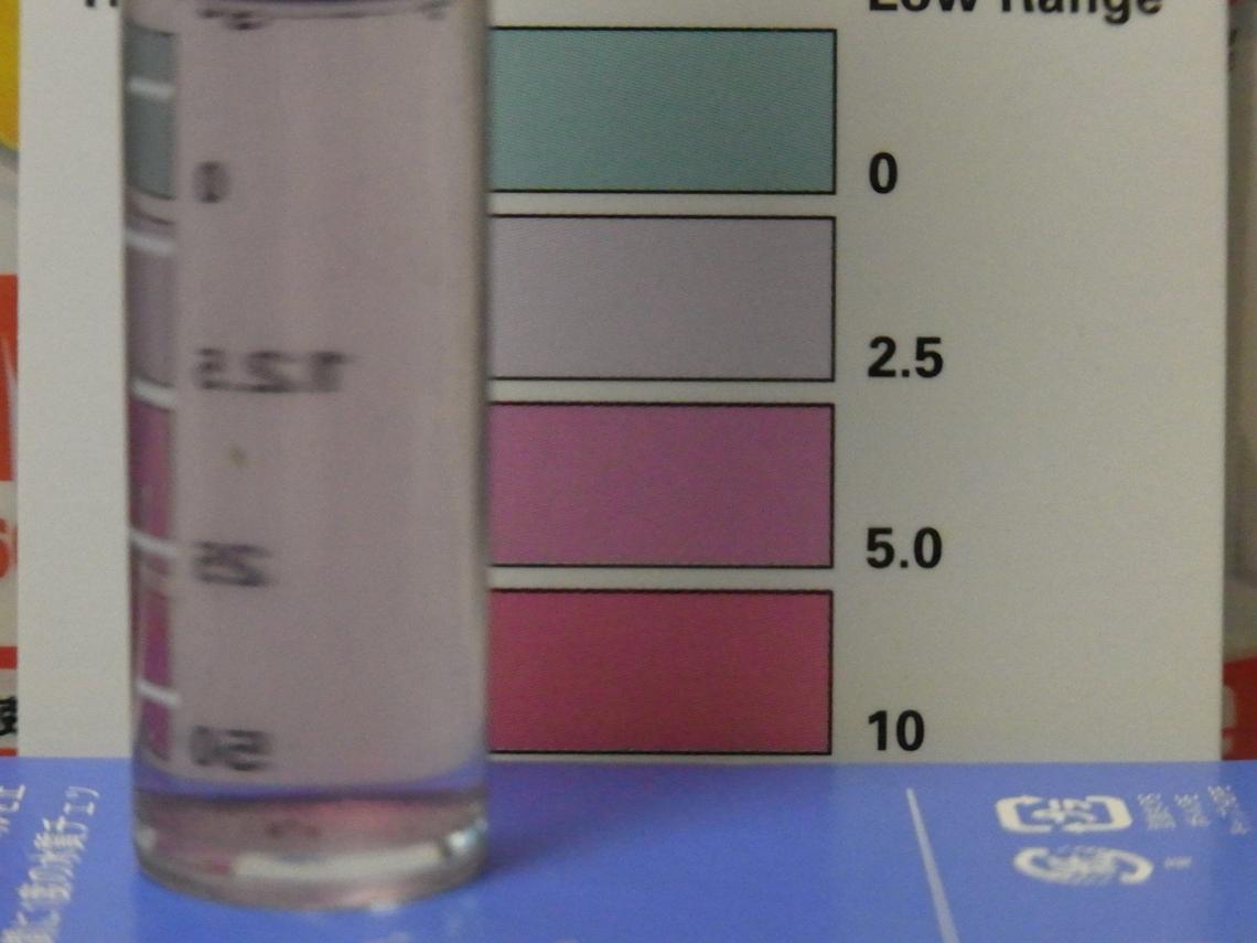 硝酸塩2_20110427