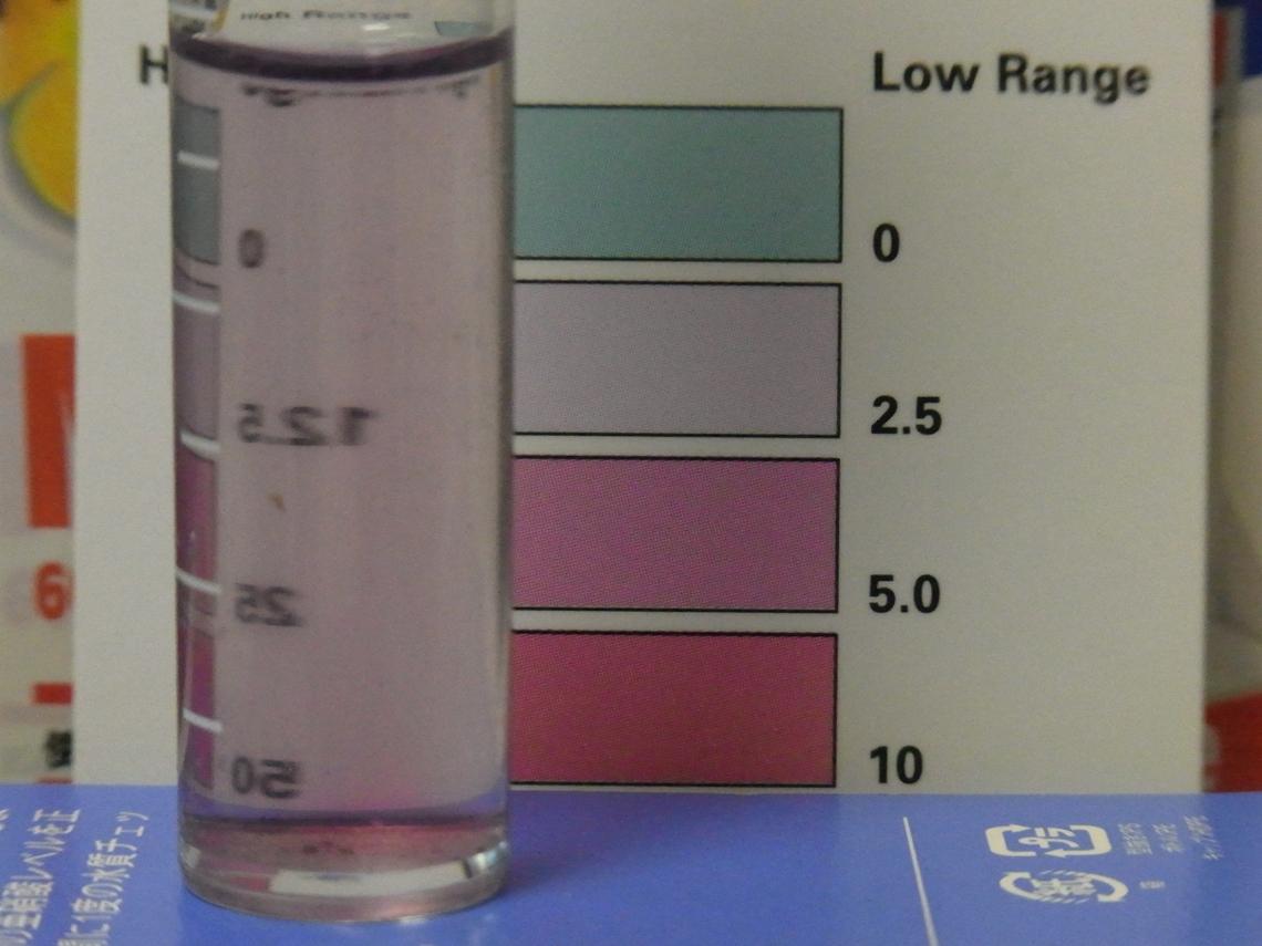 硝酸塩4_20110427
