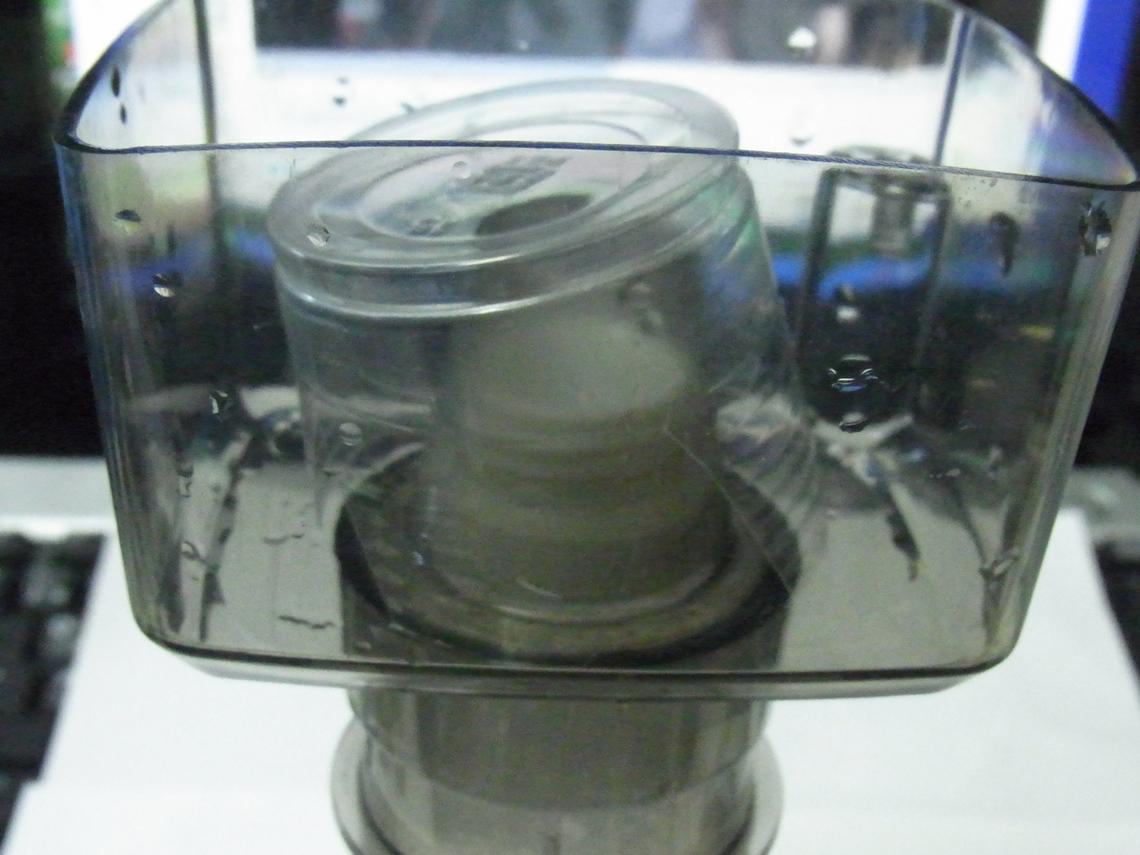 カップ20110501