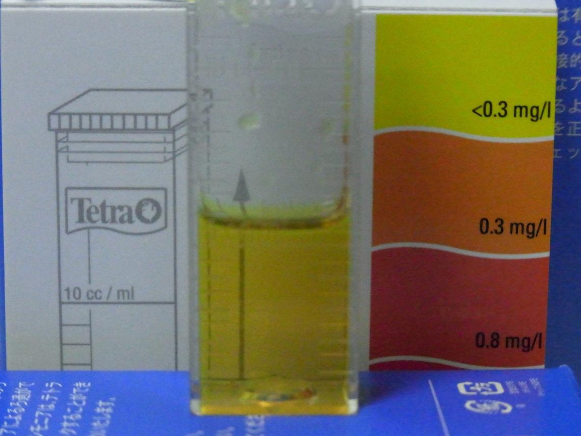 亜硝酸20110504