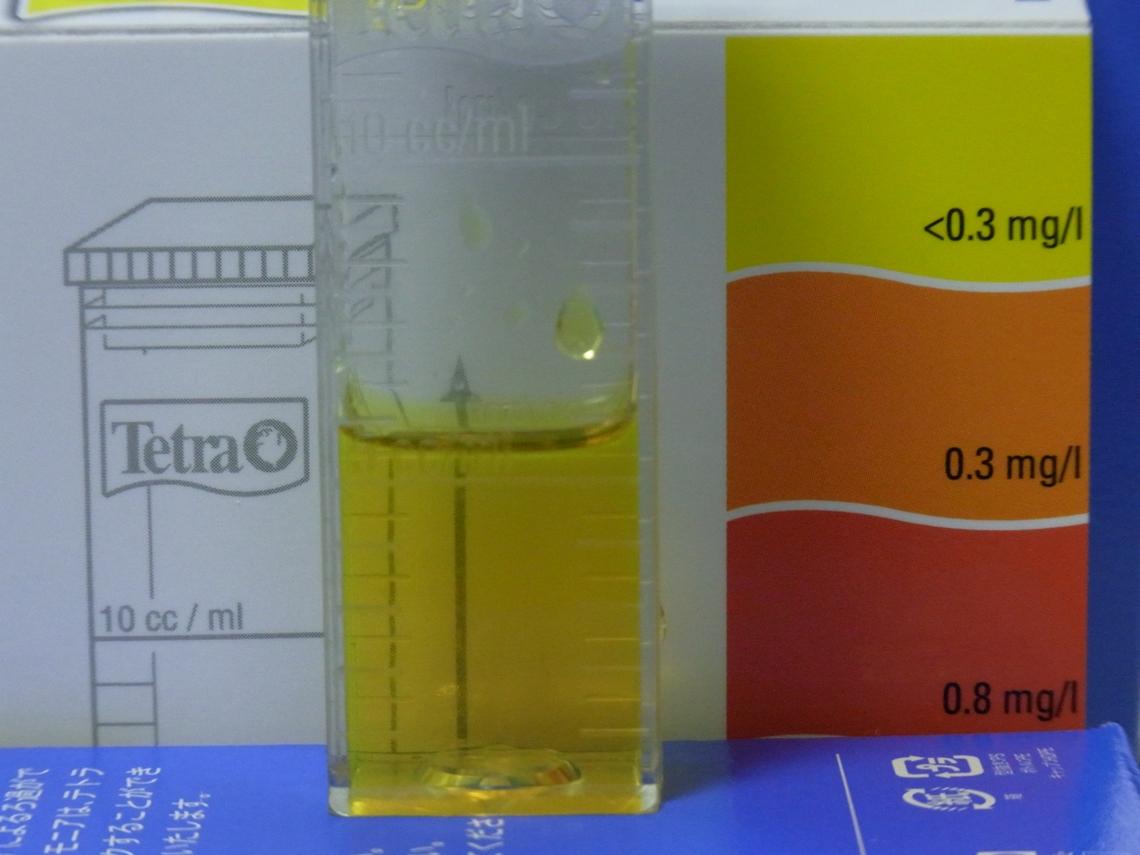 亜硝酸20110505