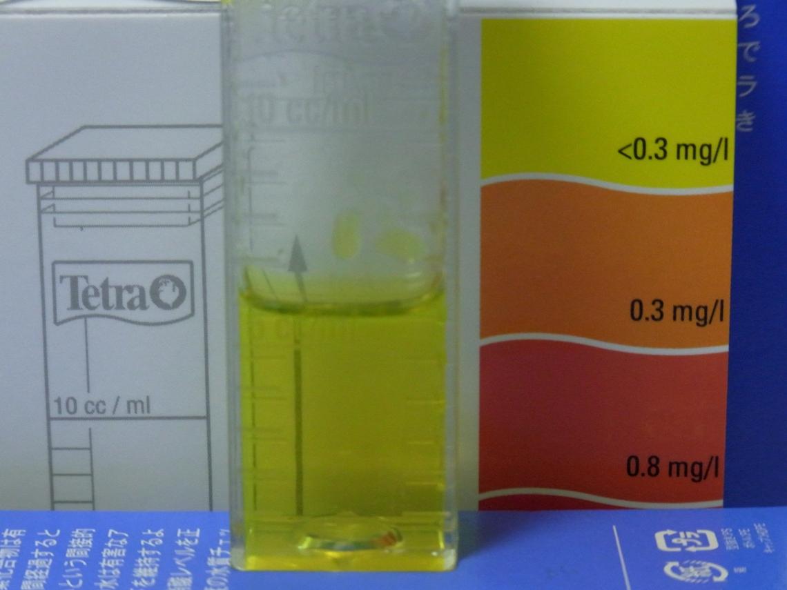 亜硝酸20110511