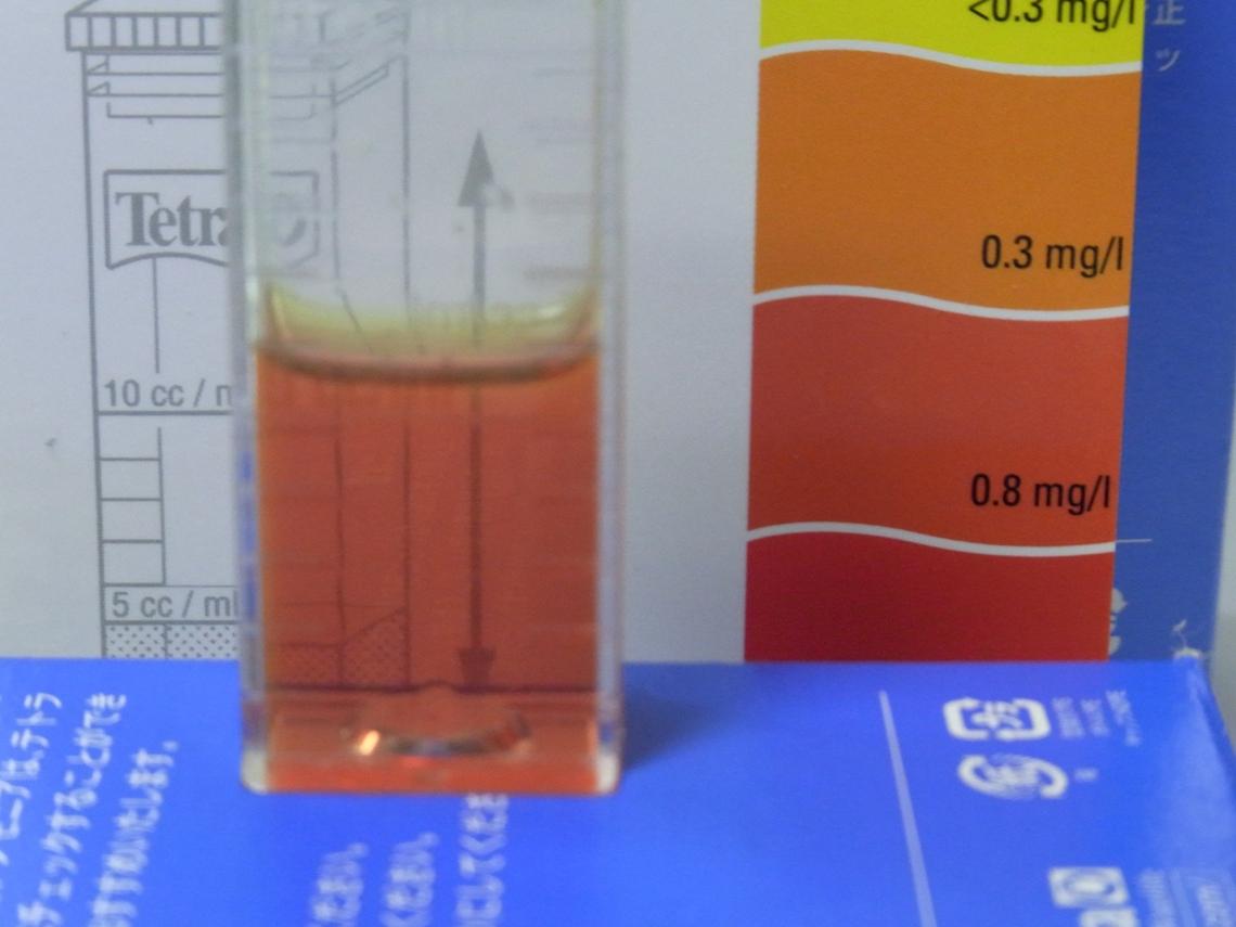 汚水亜硝酸20110515
