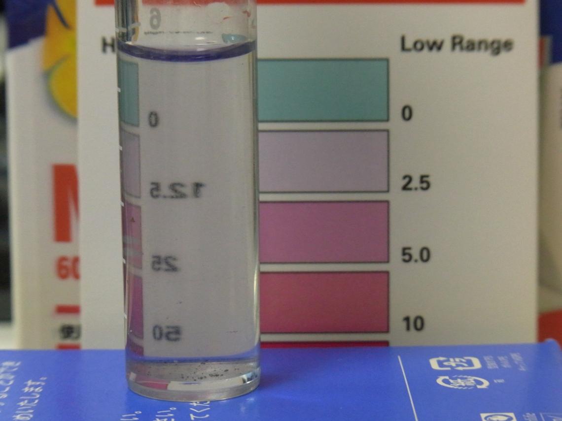 硝酸塩2_20110515