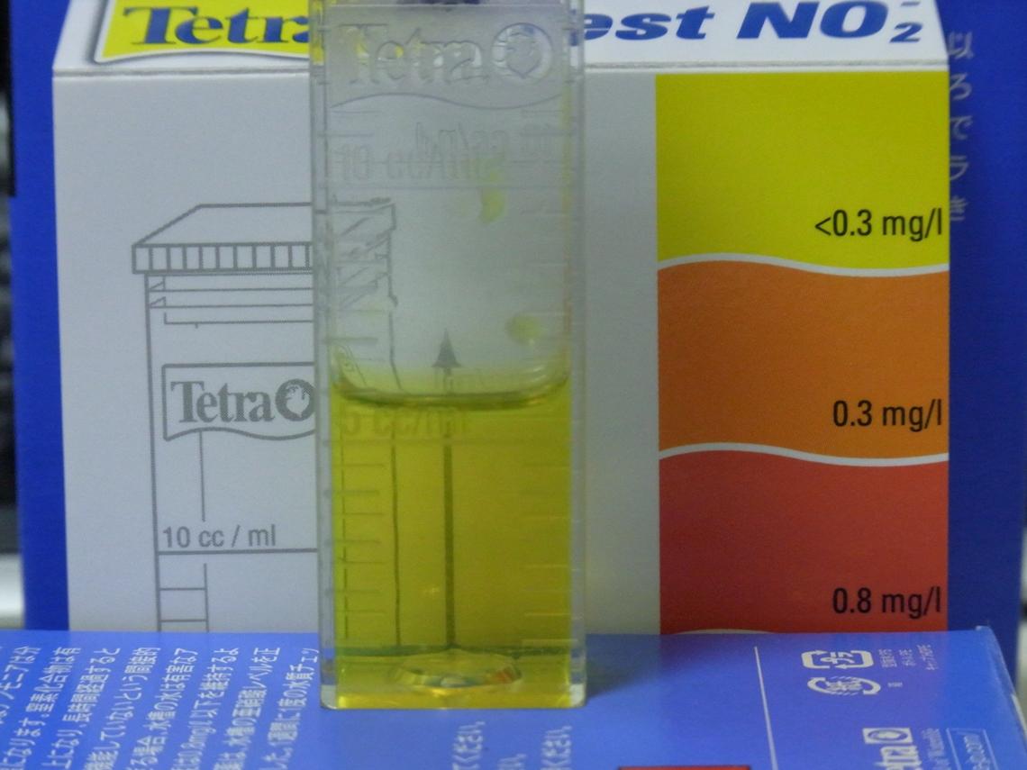 亜硝酸20110526