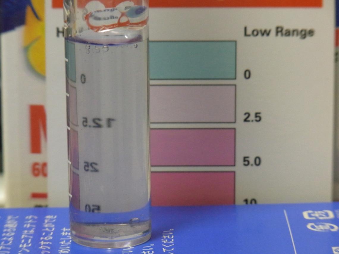 硝酸塩2_20110526