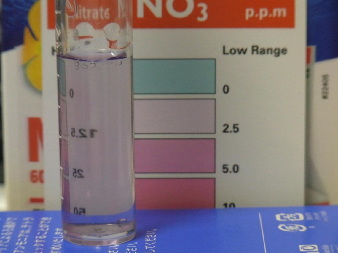 硝酸塩5_20110526
