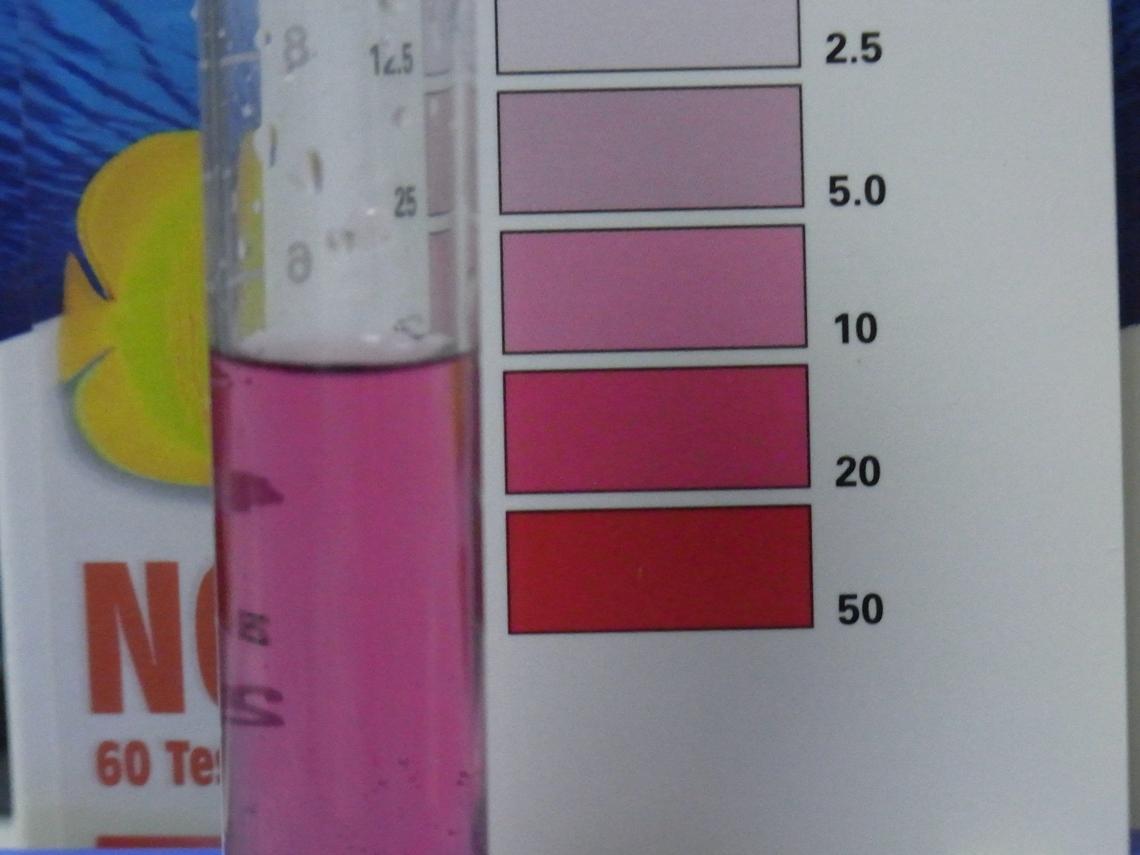 硝酸塩20110702