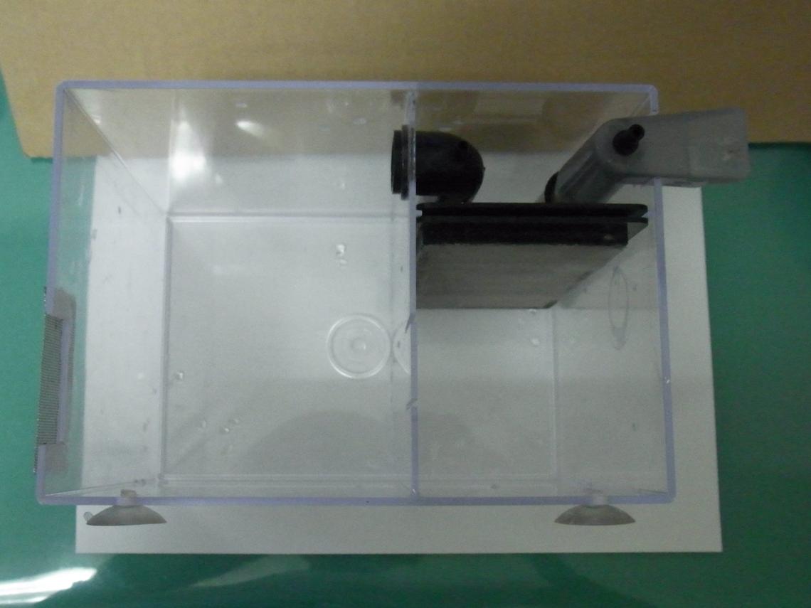 産卵BOX20110831