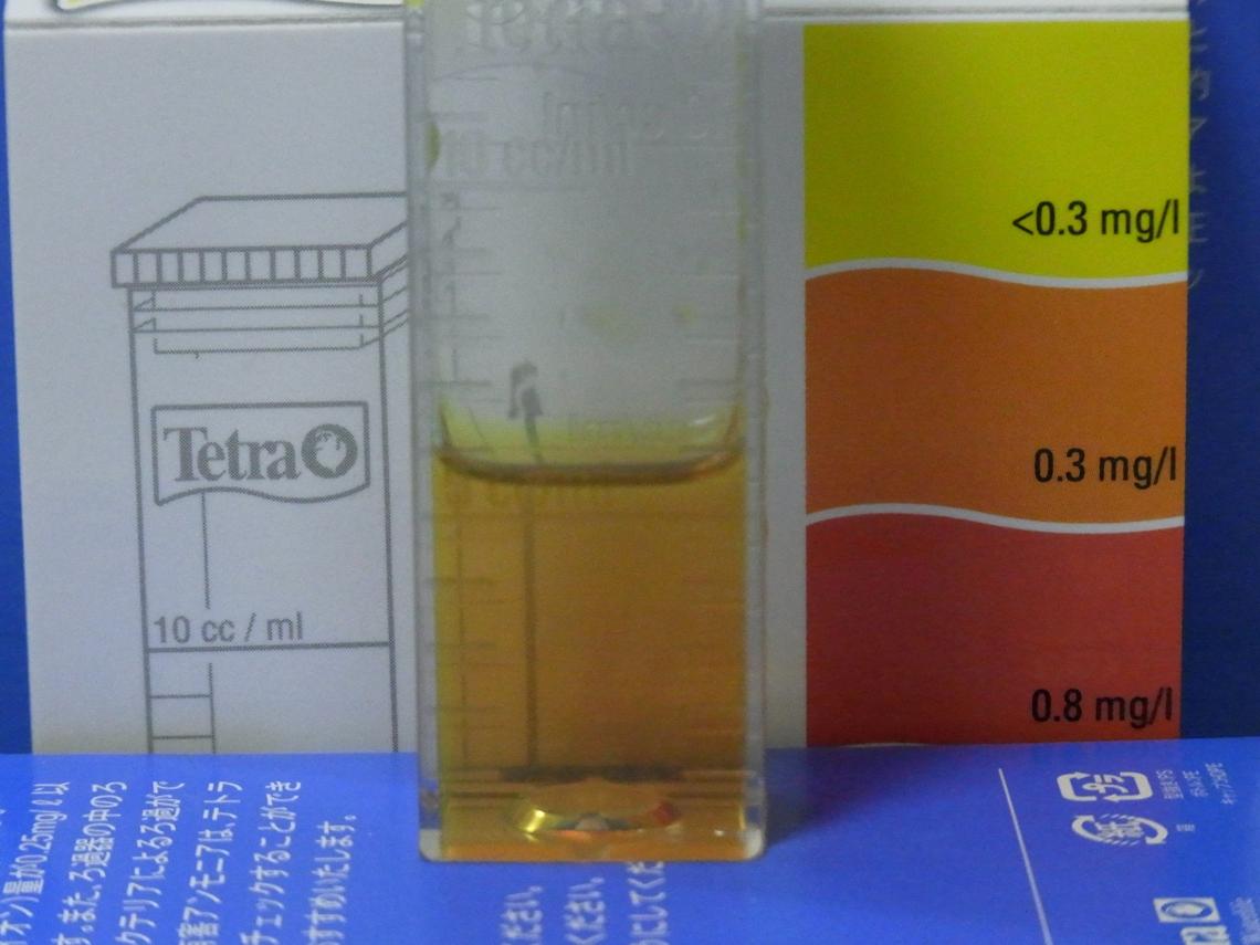 亜硝酸2_20111013