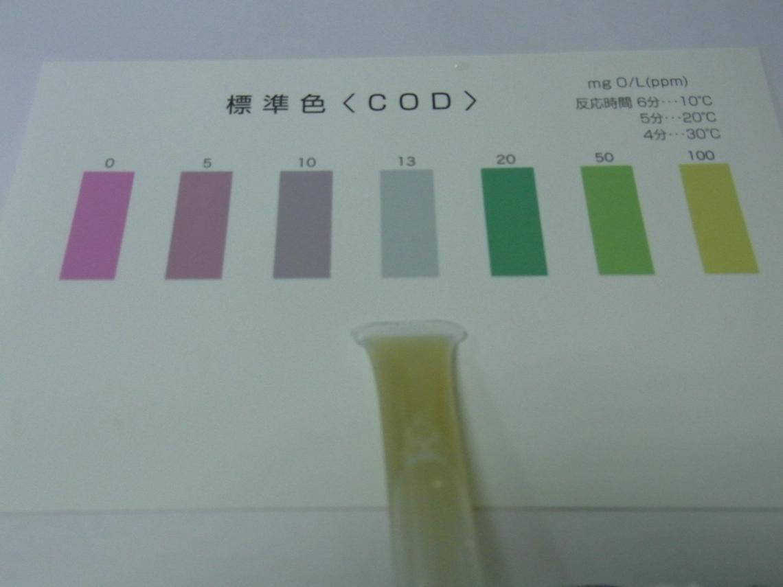COD1_20110515