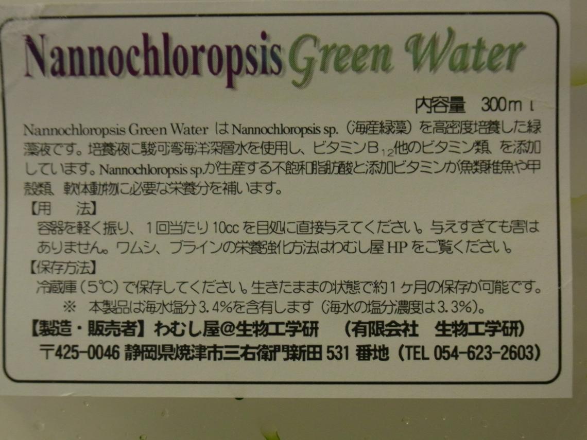 Nannochloropsis20100621