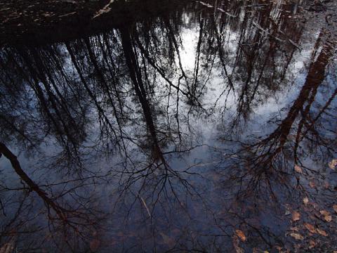 どんぐり池晩秋